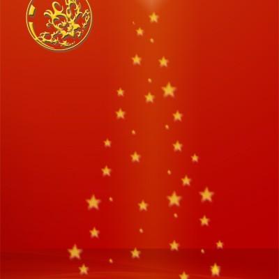bozicna-i-novogodisnja-25-12-2014