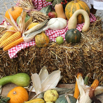 dani-kruha-1-10-2012-1